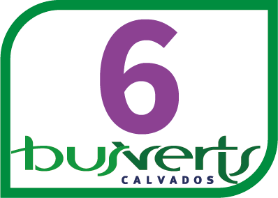Ligne Bus Verts 6