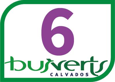 Bus Verts 6