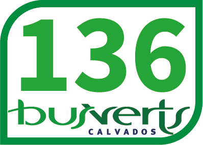 Ligne Bus Verts 136 HÉROUVILLE Allende <-> SALINE